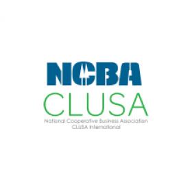 </p> <h6>Lauren Tyler | Program Manager | National Cooperative Business Association CLUSA International</h6> <p>